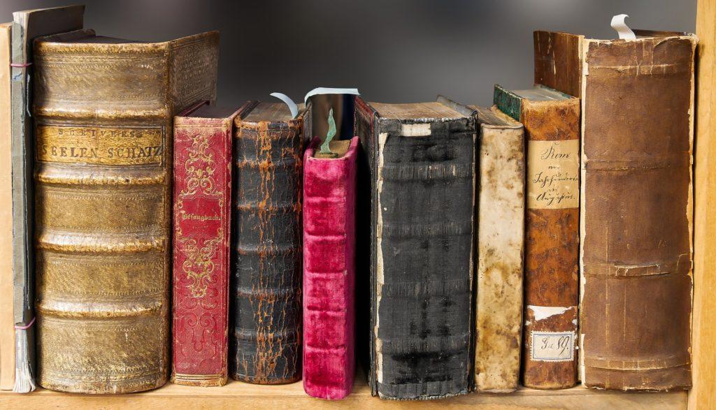 Möchten Sie ein Buch schreiben? Dann lesen Sie auch die Klassiker.
